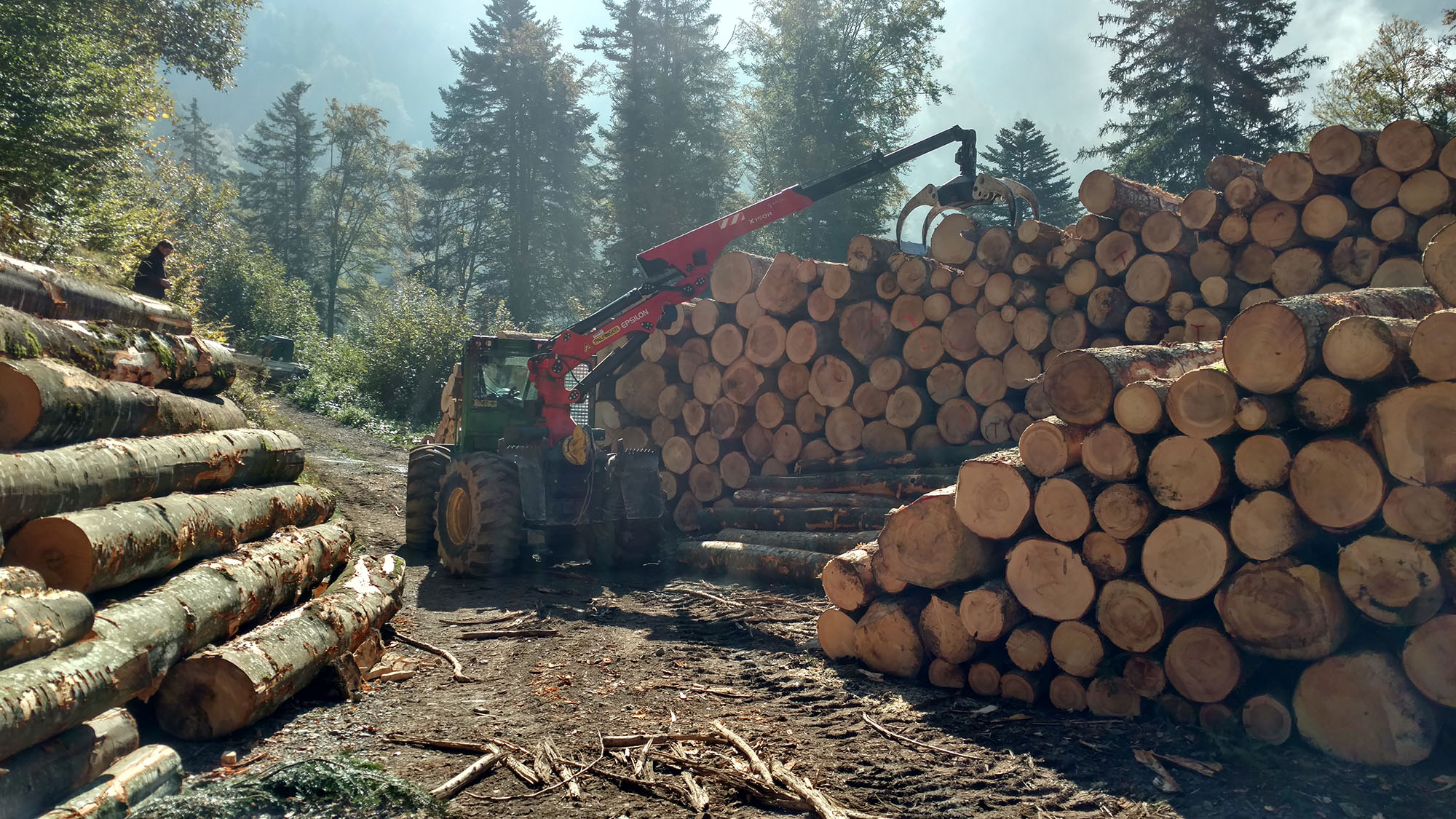 Maschinen Skidder Hochleitner AG Forstunternehmung